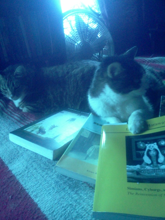 Ofelia y Diego ---> How long before we get our treats, and what's with all these books?