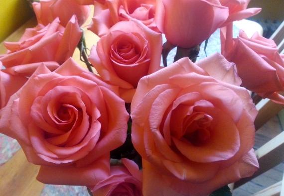 Lovely roses from my dear compa and fellow CUNY Grad Center student María de Argentina/Rosas lindas de mi querida compa y tambíen estudiate del CUNY Grad Center, María de Argentina